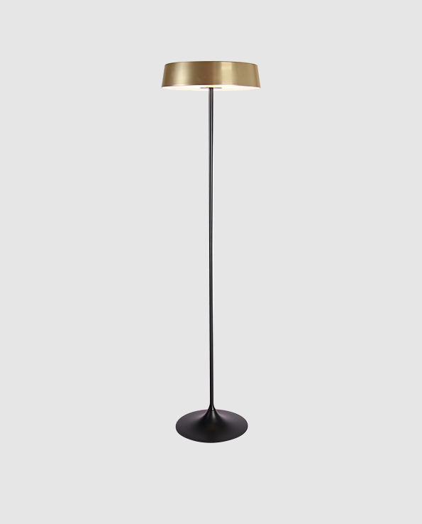 CHINA LED Floor Lamp